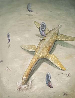 Jurassic sea monster - Arminisaurus schuberti