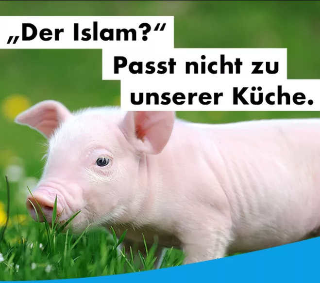 AfD campaign poster