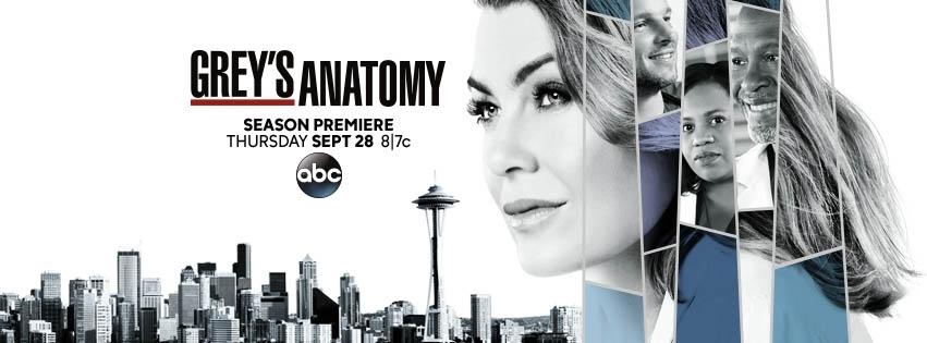 Resultado de imagem para Grey's Anatomy season 14