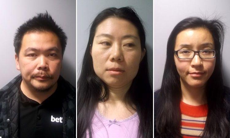 prostitution gang