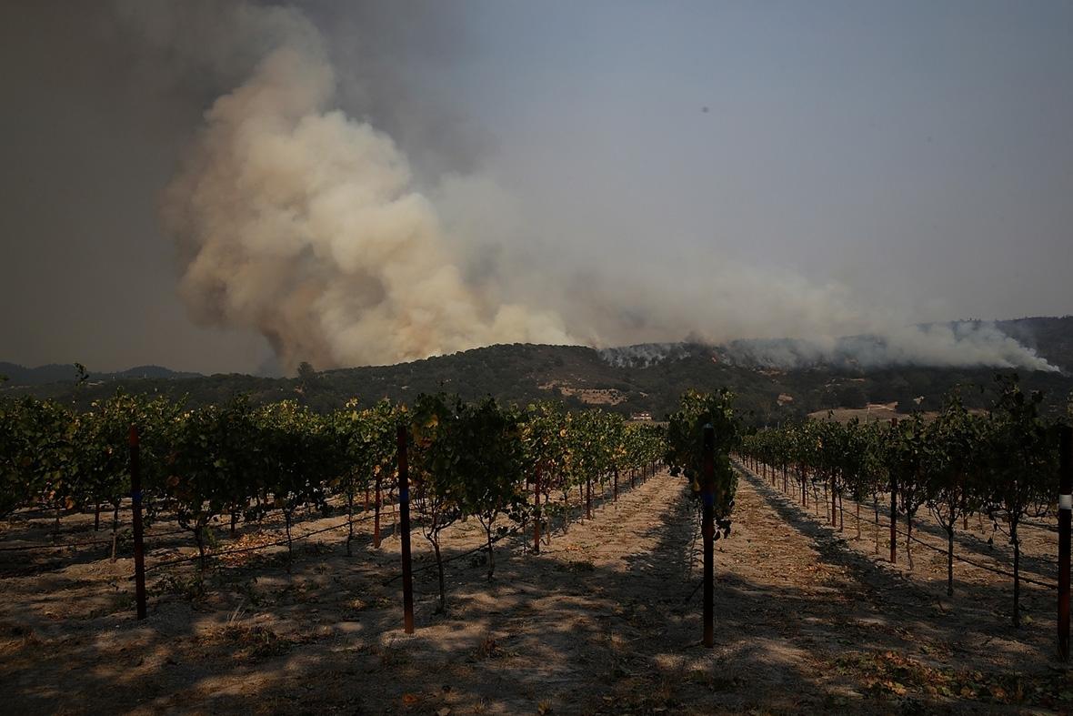 California wine wildfires smoke