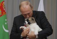Putin kissing puppy dog
