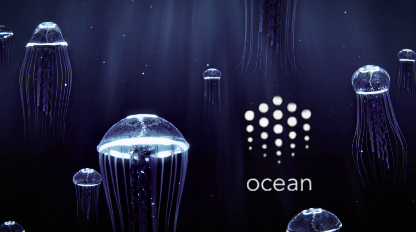 Ocean: A blockchain protocol to power decentralised data marketplaces for artificial intelligence
