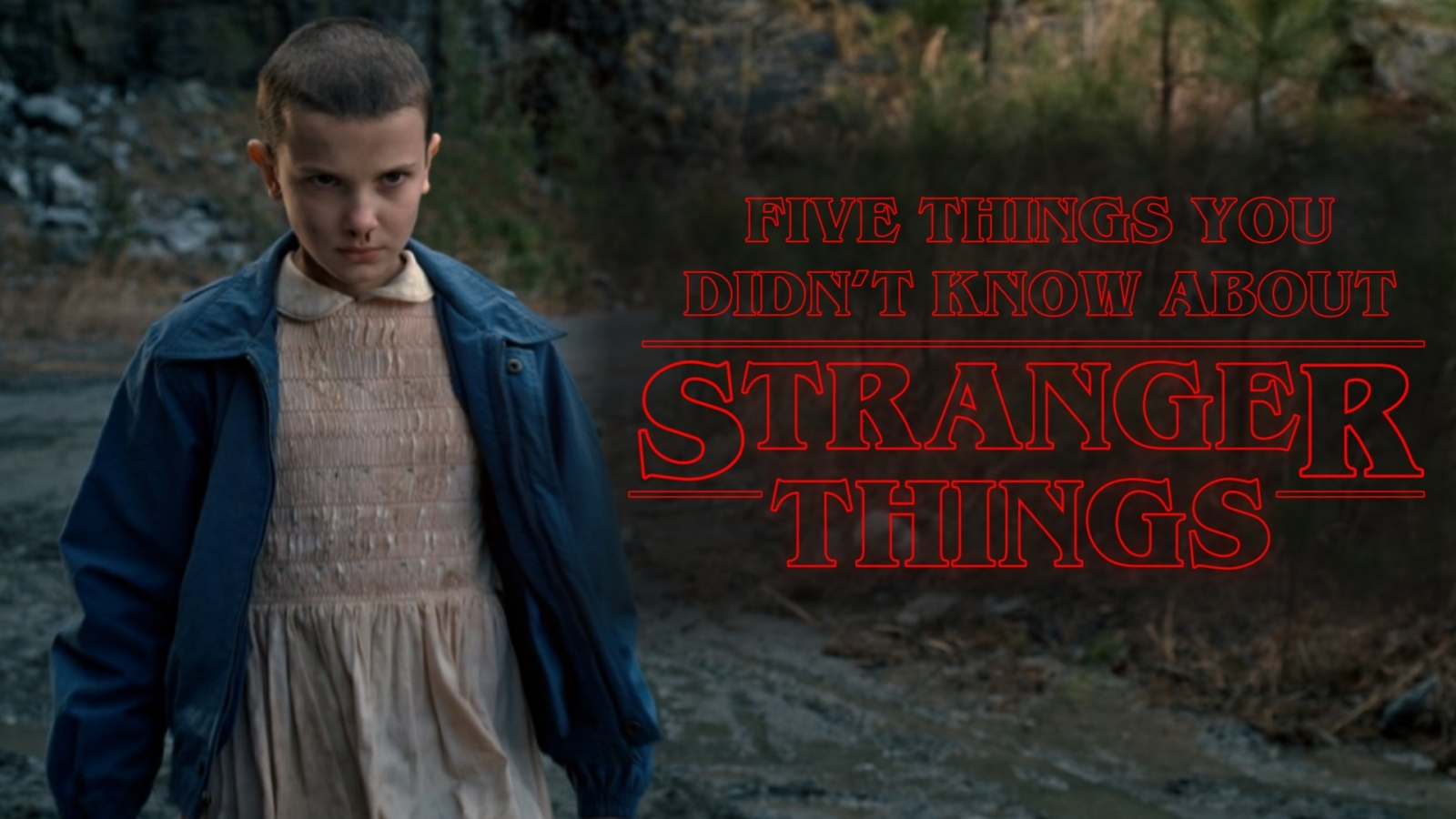 Five things you didn't know about Stranger Things