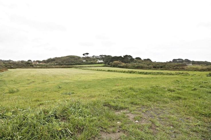 Bunker field