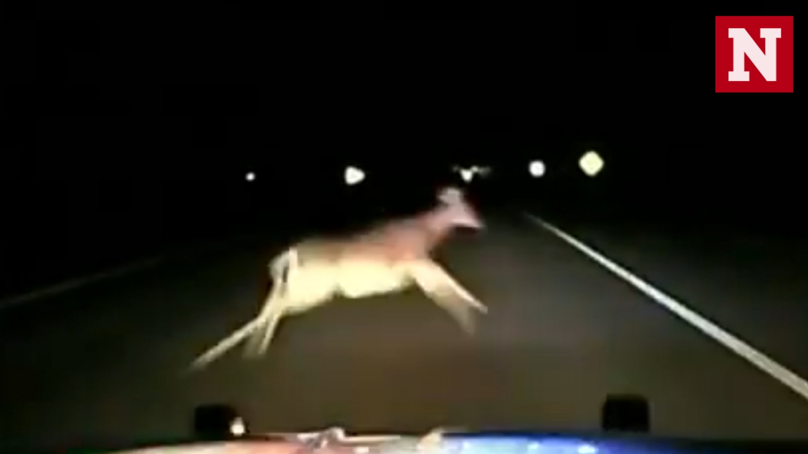 police-car-left-wrecked-after-high-speed-collision-with-deer
