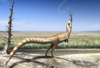 Sinosauropteryx