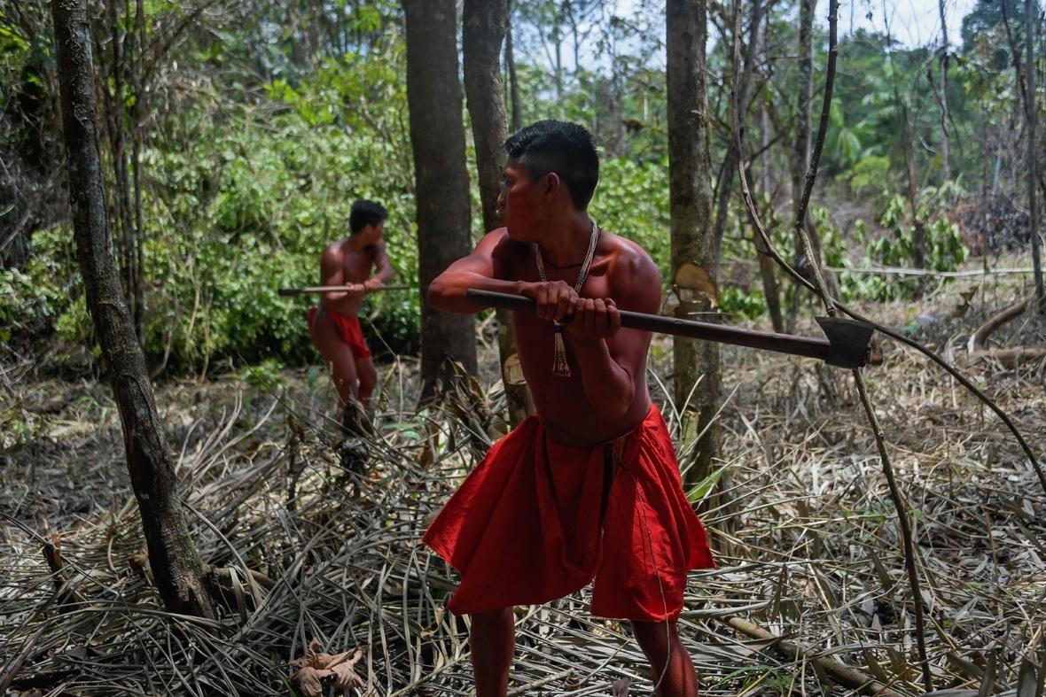 Waiapi tribe Amazon brazil