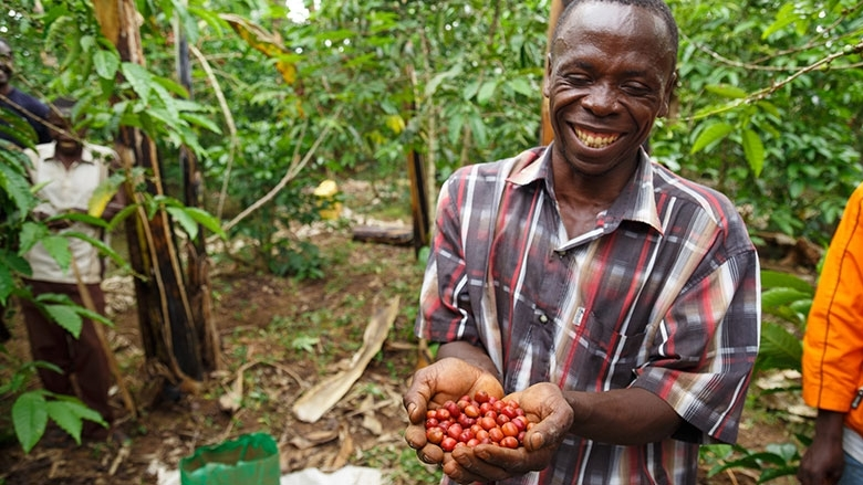 Coffee farmers in Uganda