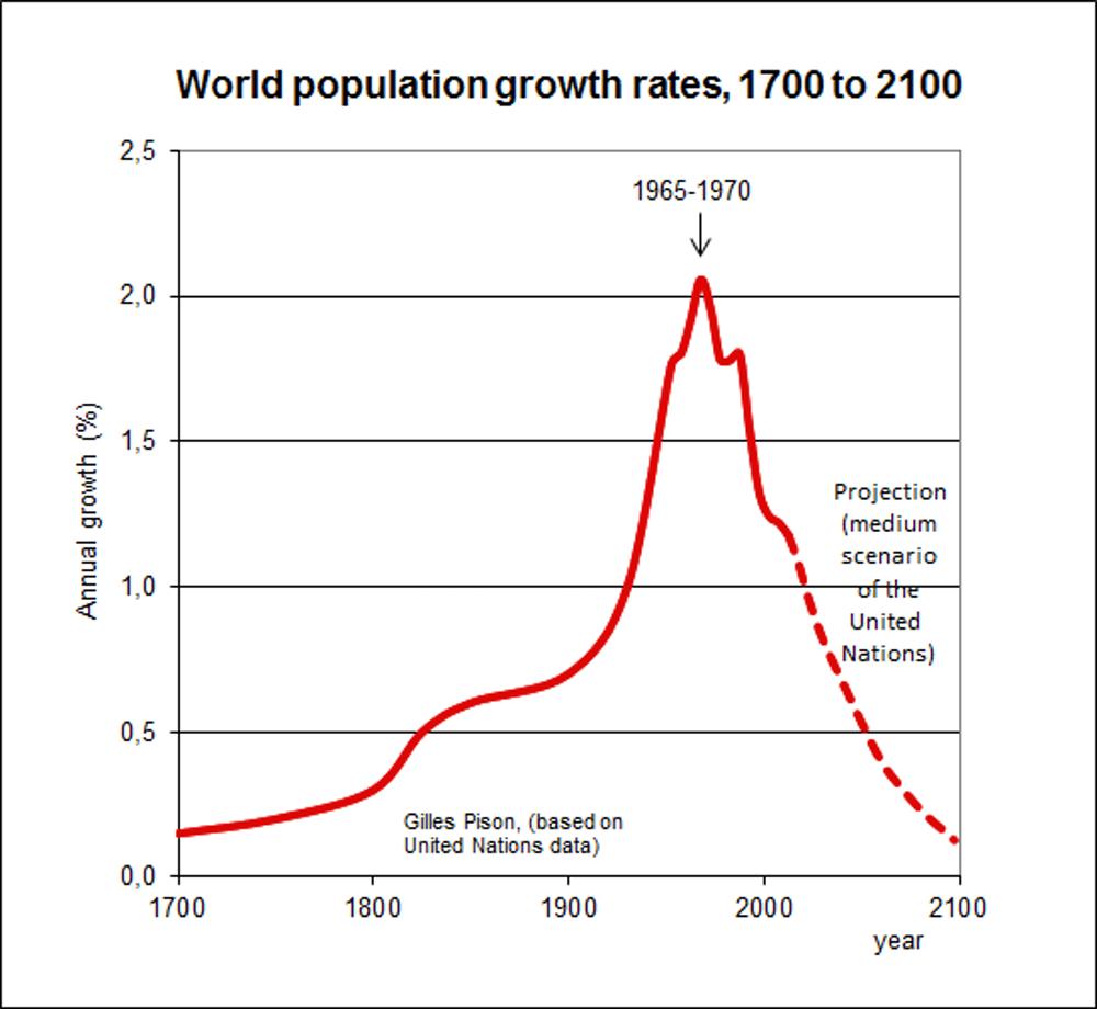 Overpopulation 2