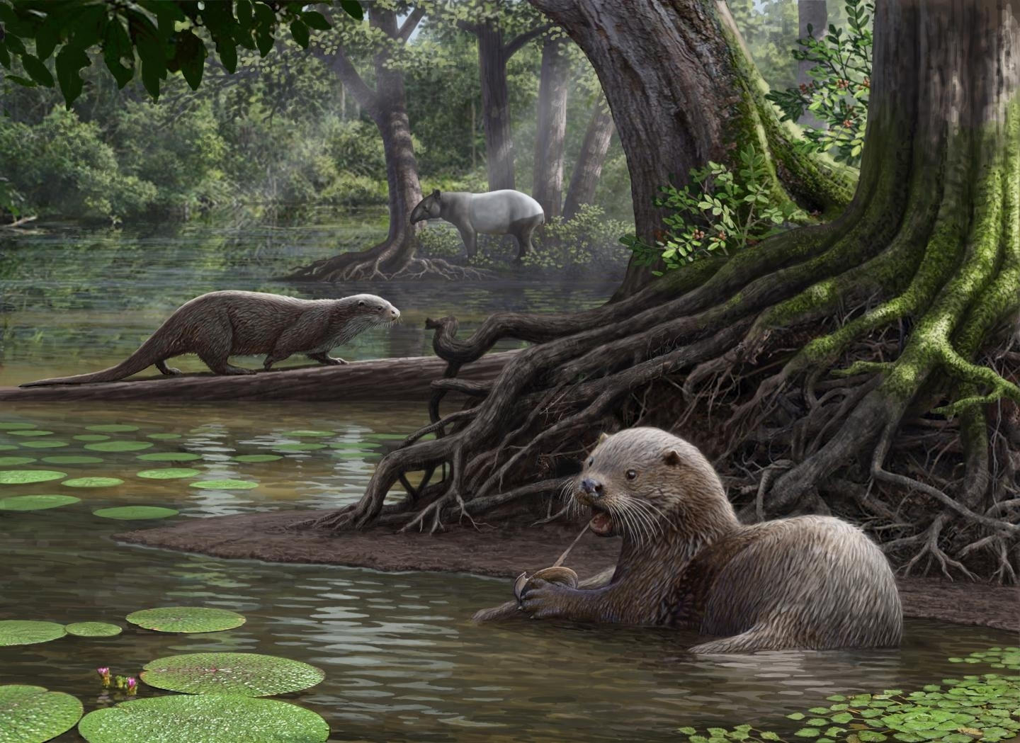 Meet the Rottweiler-Sized Prehistoric Otter With Teeth That Could Crunch Bone