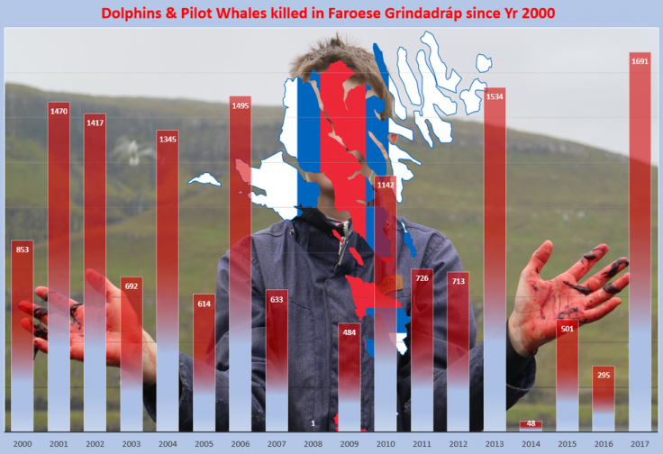 Dolphin and whale killings in the Faroes