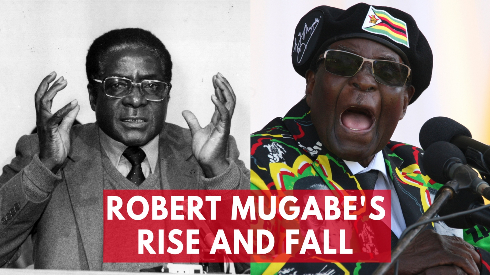 President Robert Mugabe's rise and fall