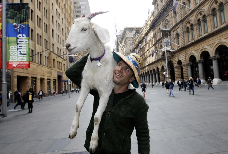 Australians mourn death of celebrity goat with 1.7 million Facebook fans