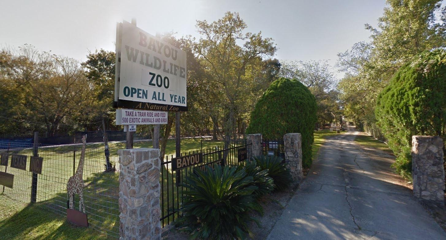 Bayou Wildlife Zoo Texas