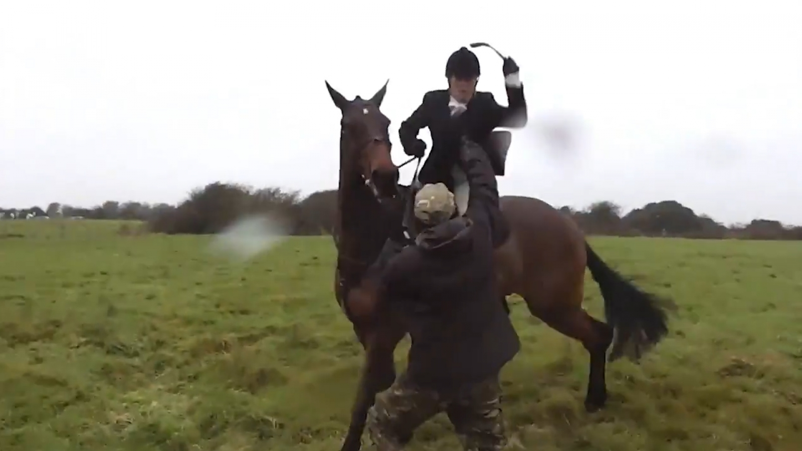 Fox hunter seen whipping activist with riding crop