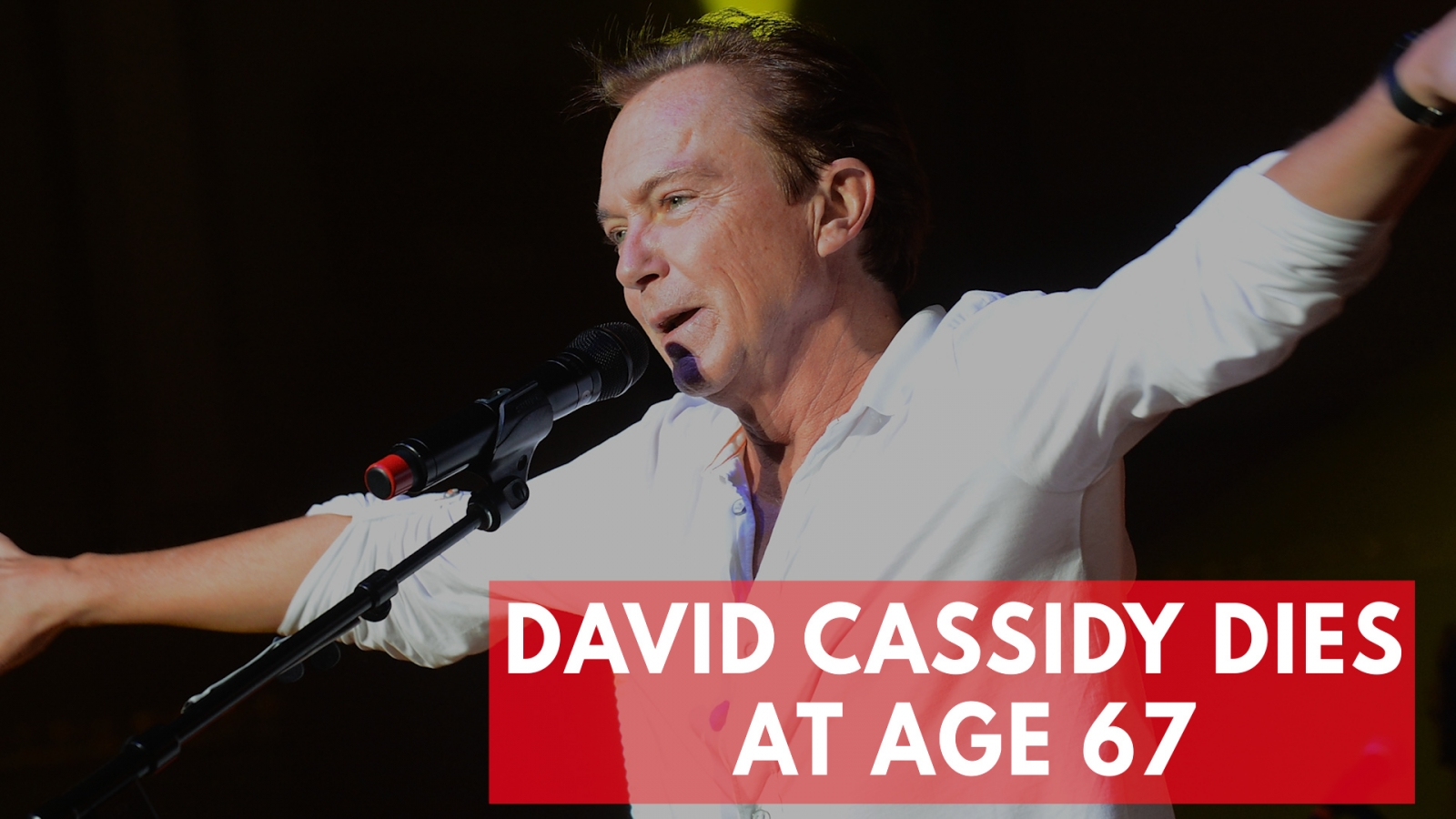 David Cassidy, 1970s teen heartthrob, dies at age 67