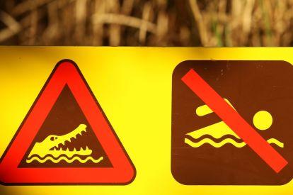 Crocodile swim signs
