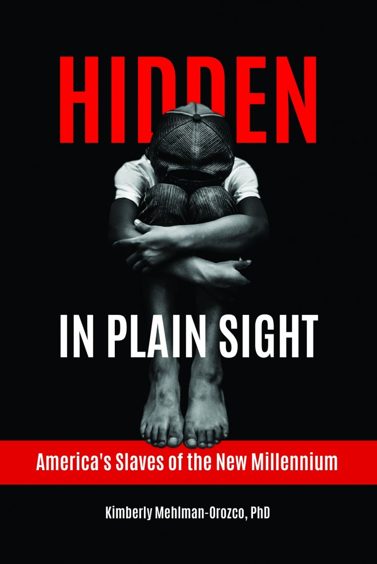 Hidden in Plain Sight by Kimberly Mehlman-Orozco