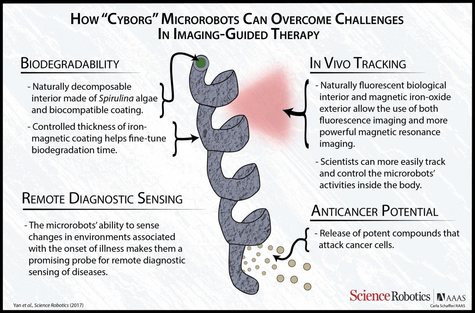 Nanobots fighting cancer
