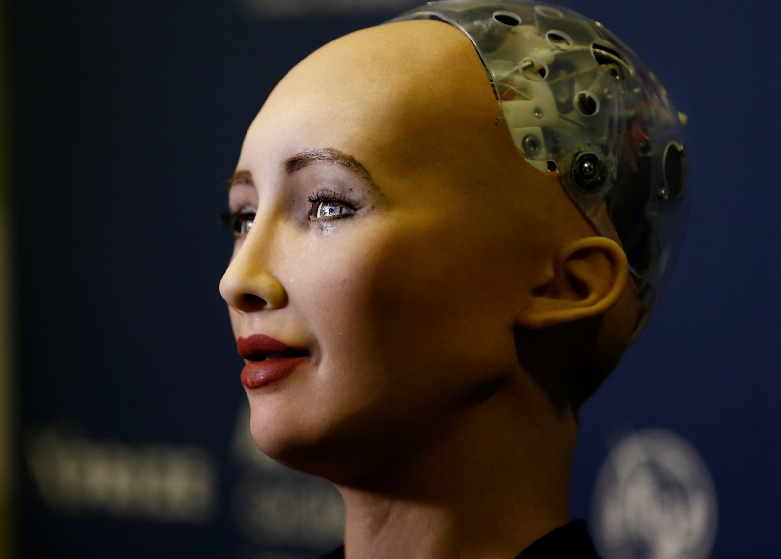 World's first humanoid citizen wants to start a family