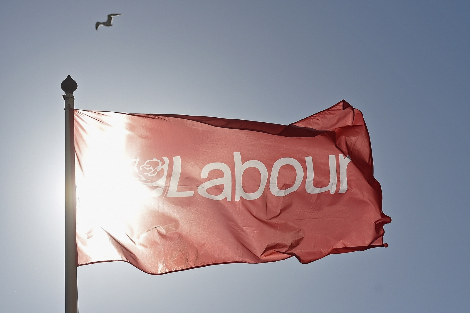 Labour staff member dies suddenly amid inquiry