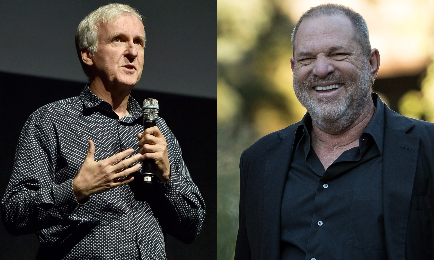 James Cameron Harvey Weinstein