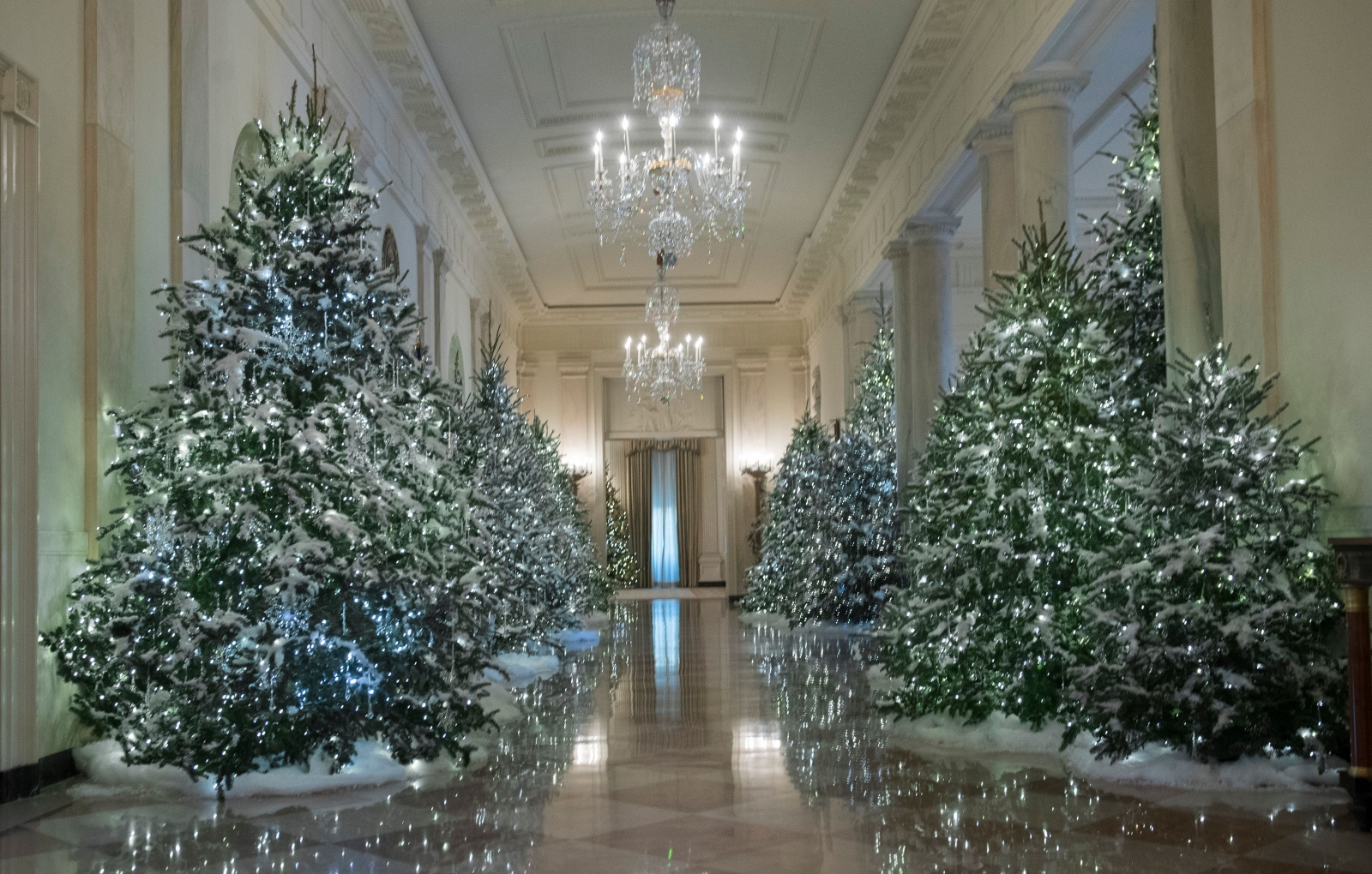 White House Christmas decorations, personally chosen by Melania Trump,  revealed