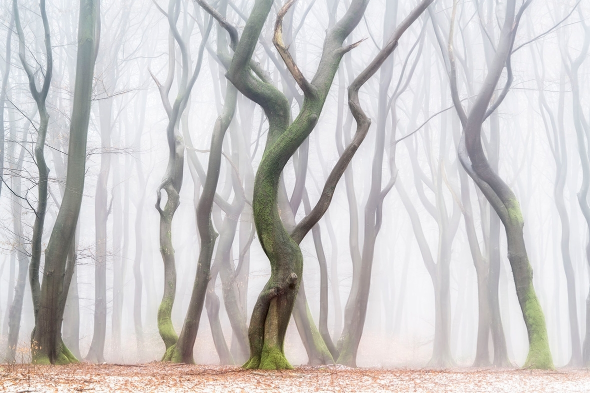 Masters of Landscape Photography: Stunning images by 16 leading exponents of the genre