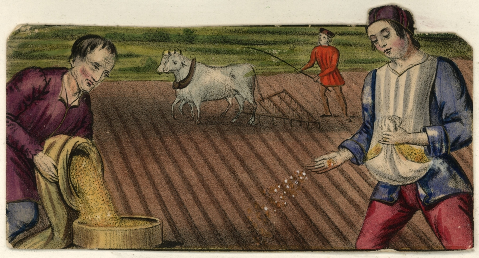 Farming in the Middle Ages