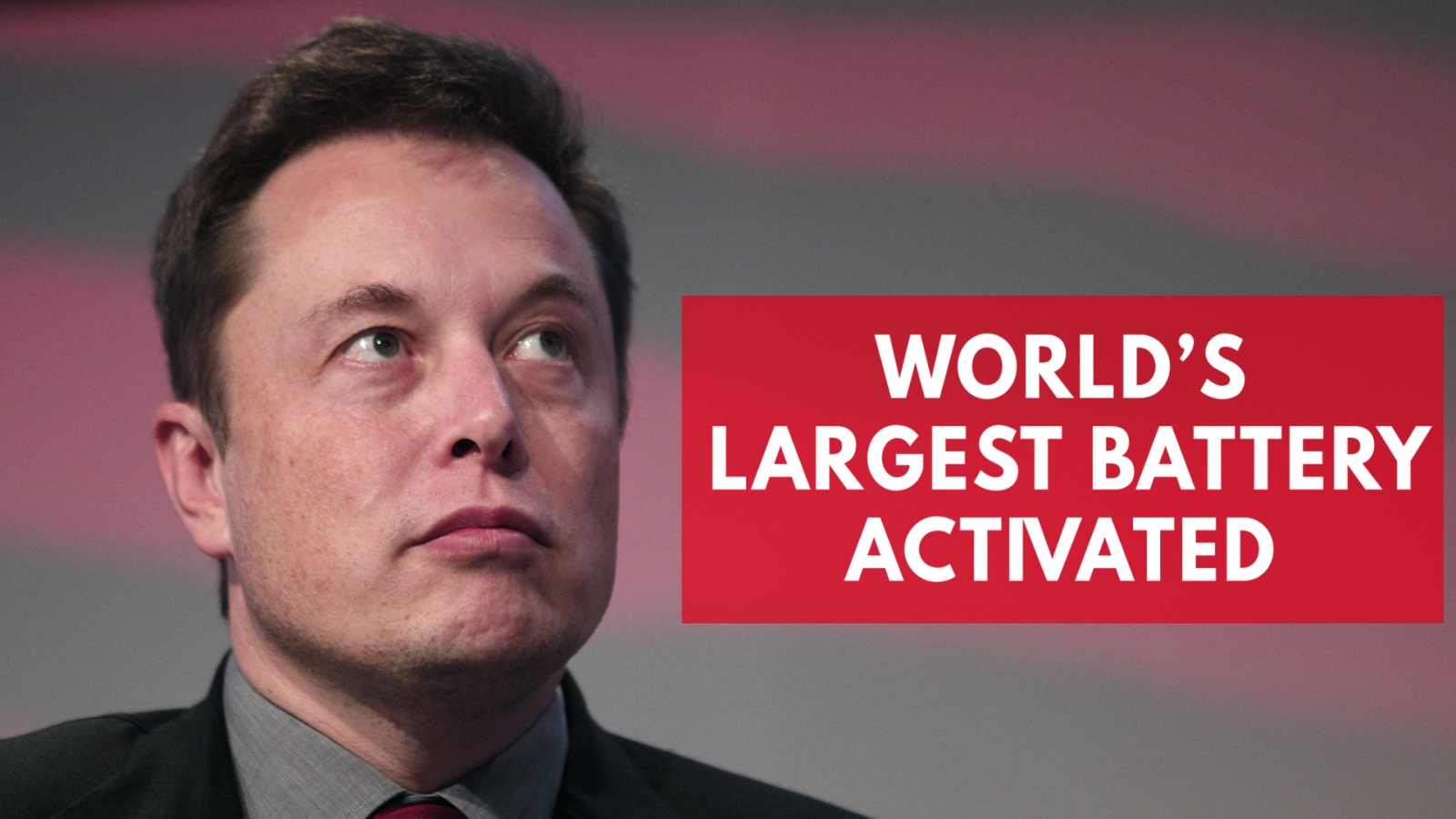 Elon Musk wins bet as Tesla mega-battery is built in just 60 days