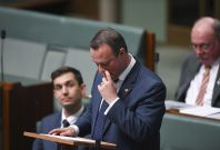 Tim Wilson proposed his gay partner