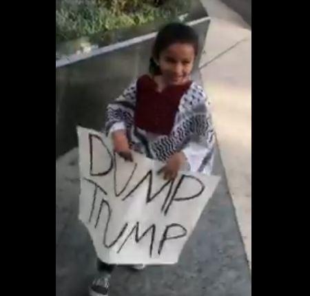 """""""Dump Trump"""" placard"""