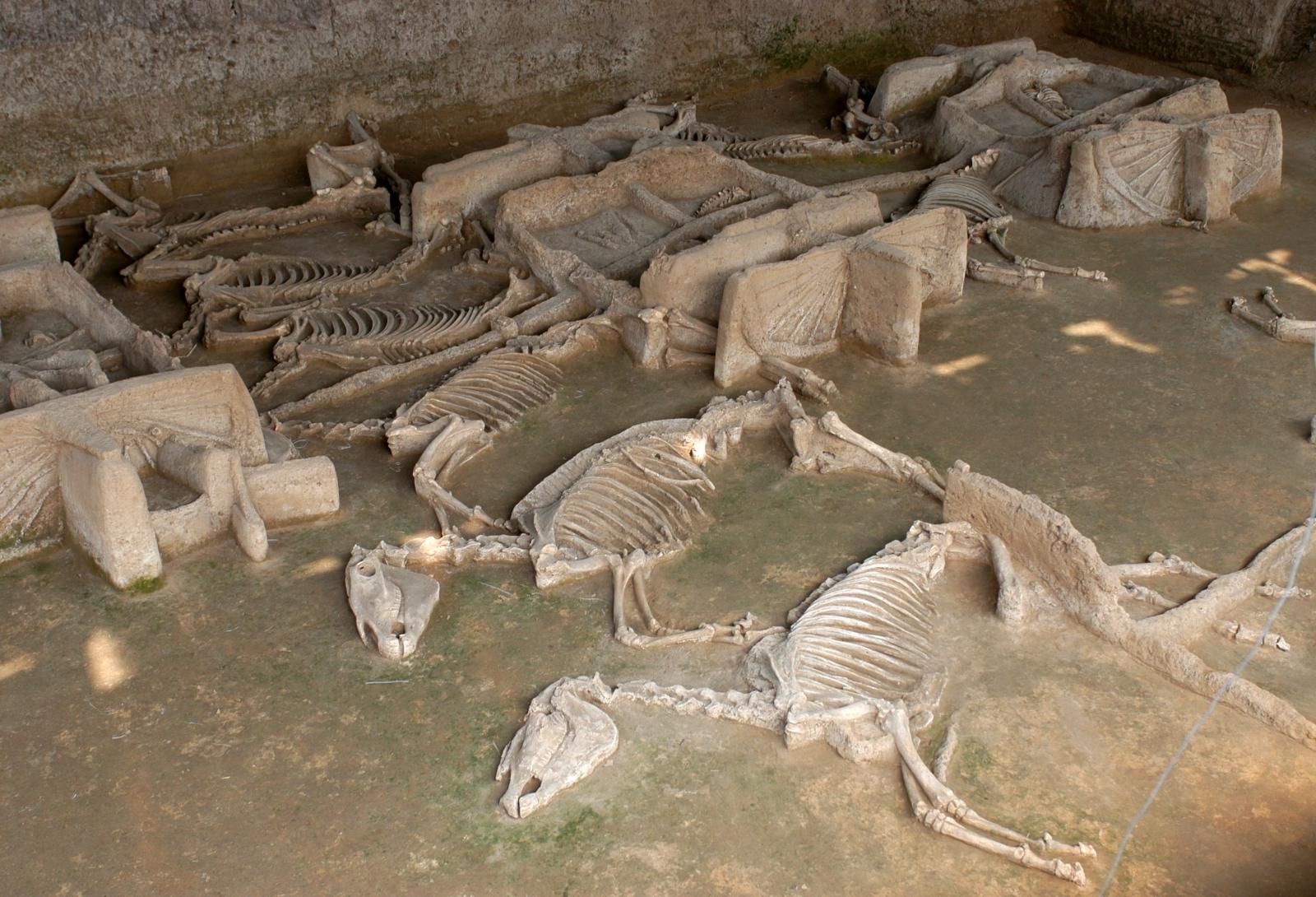 Eastern Zhou dynasty
