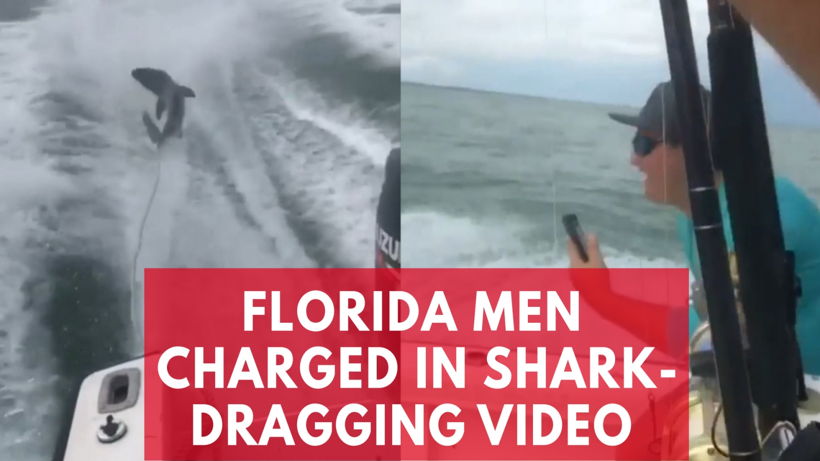 shocking-video-of-shark-dragged-by-speed-boat-leads-to-arrests