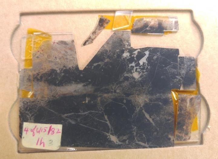 Earliest direct evidence of life on Earth