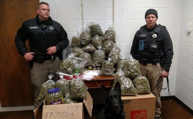 Sheriffs with seized marijuana