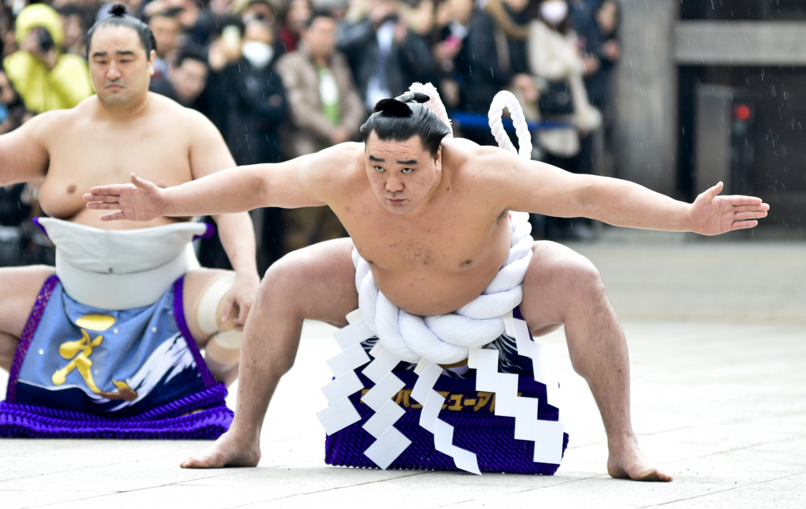 Harumafuji  sumo wrestler