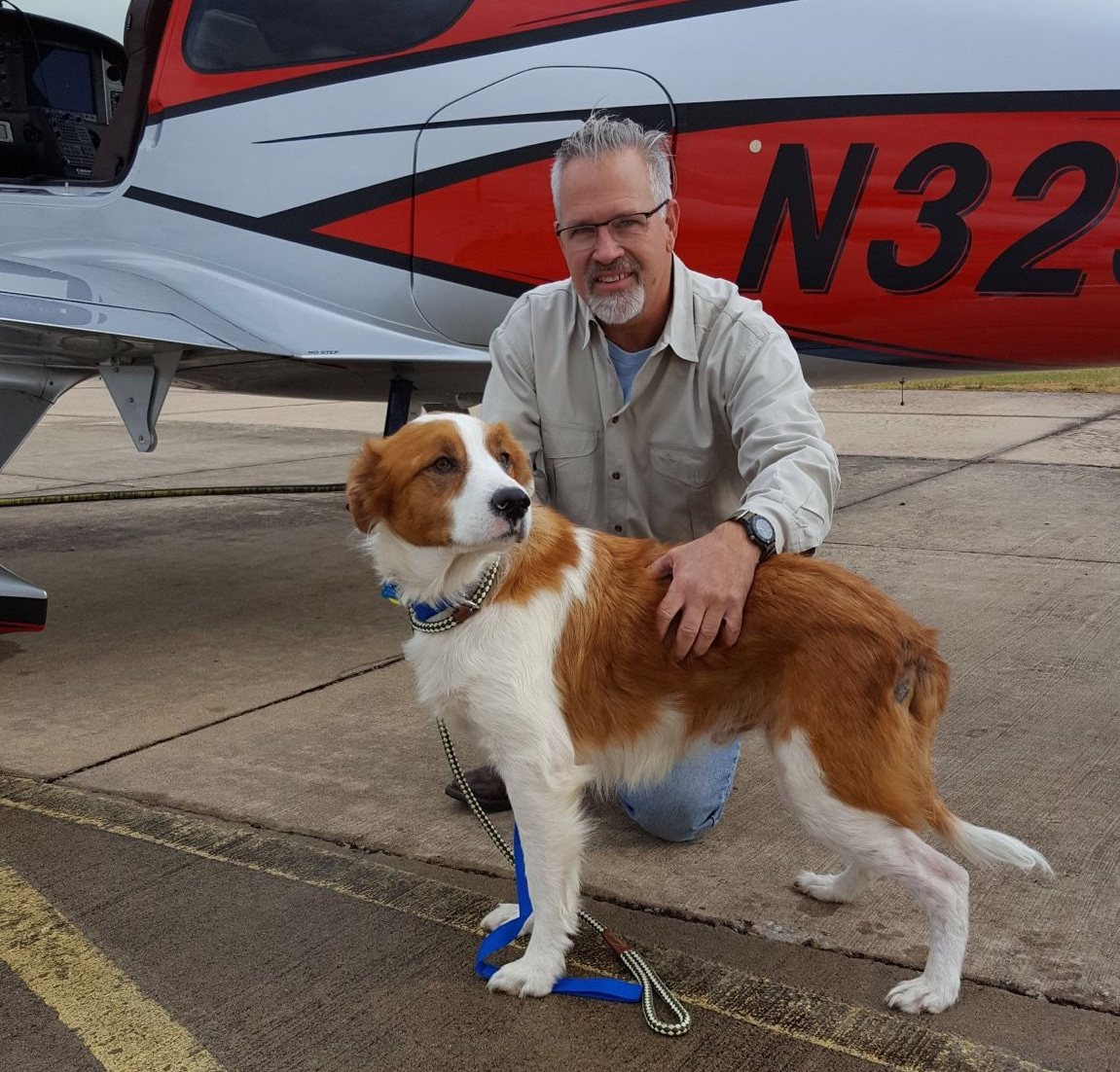 missing animal rescue pilot