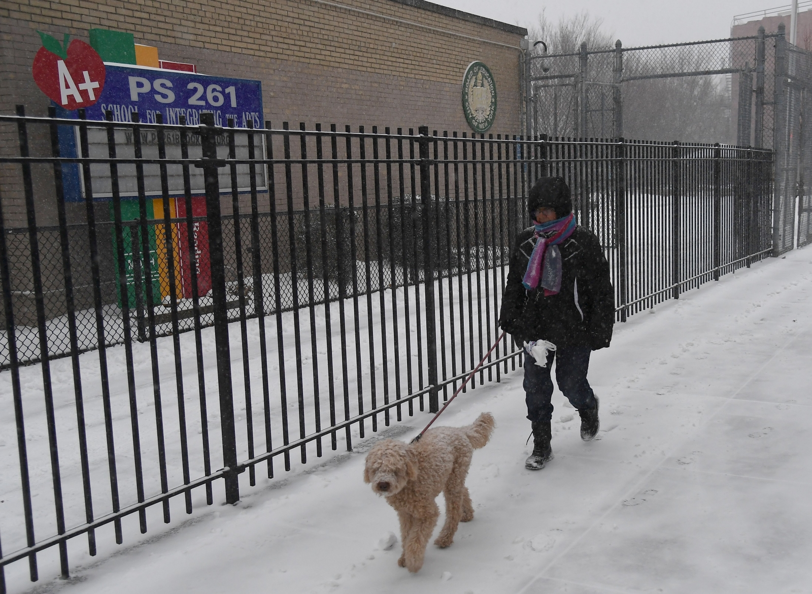 US bomb cyclone dog deaths