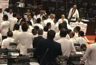 Sri Lanka parliament fight brawl