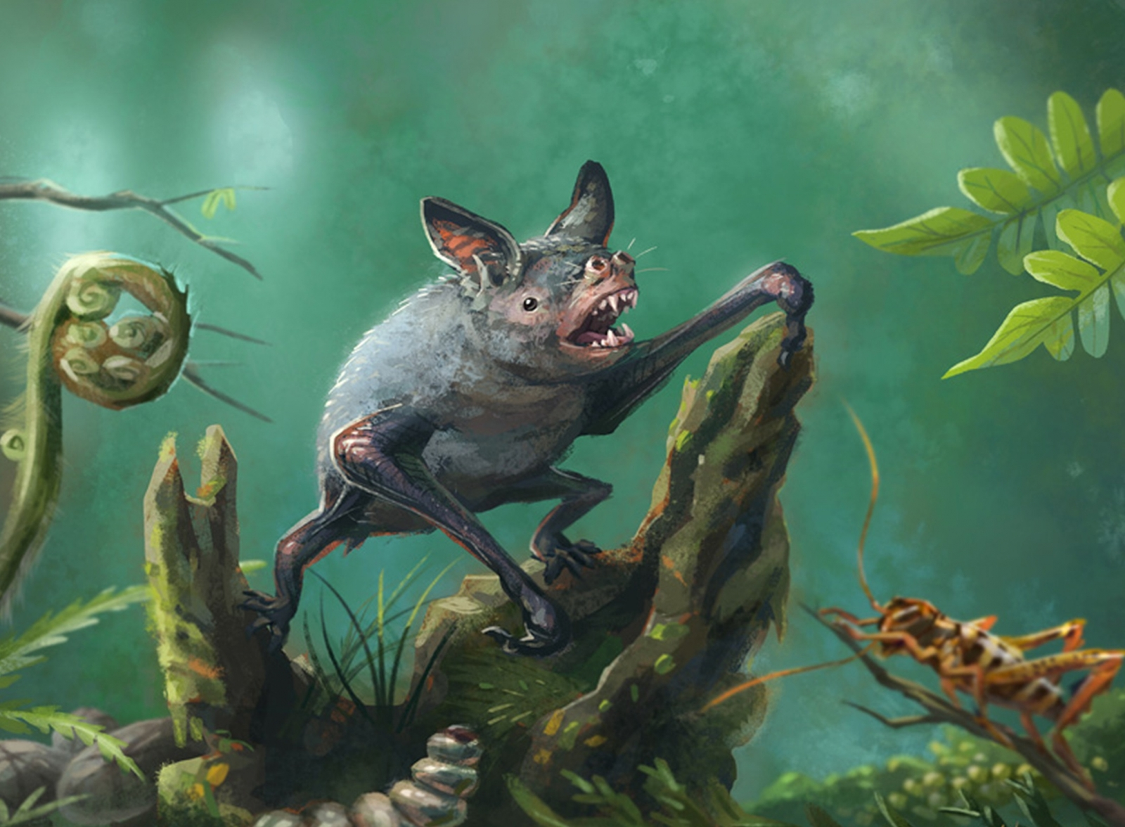 Found: A Giant Extinct Burrowing Bat