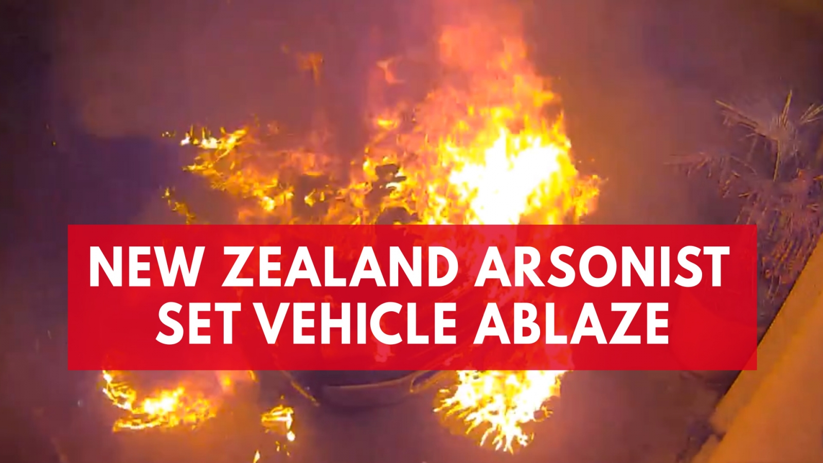 Video shows moment a New Zealand arsonist's attempt to set car on fire possibly backfires