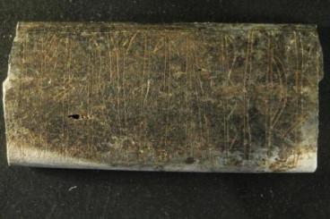 Bone plate runes.