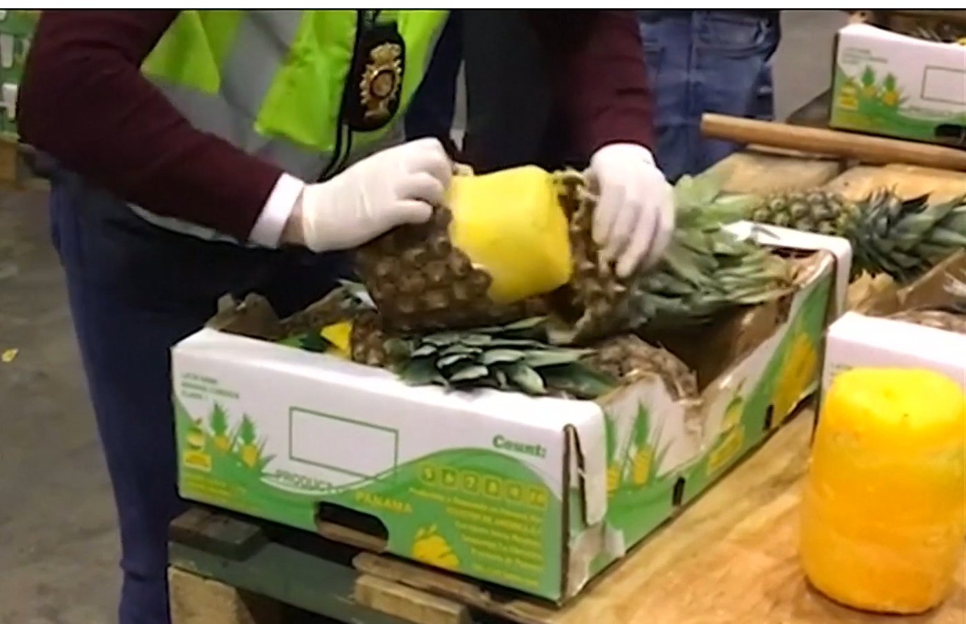 Police opening fake pineapples filled with cocaine