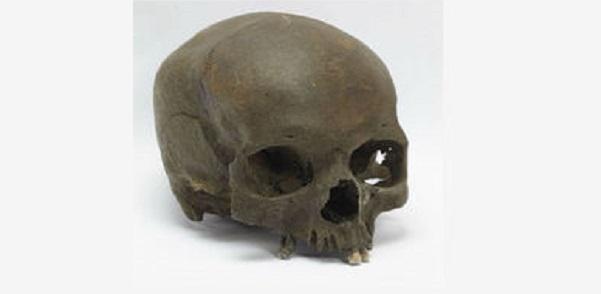 Skull Iron Age Woman