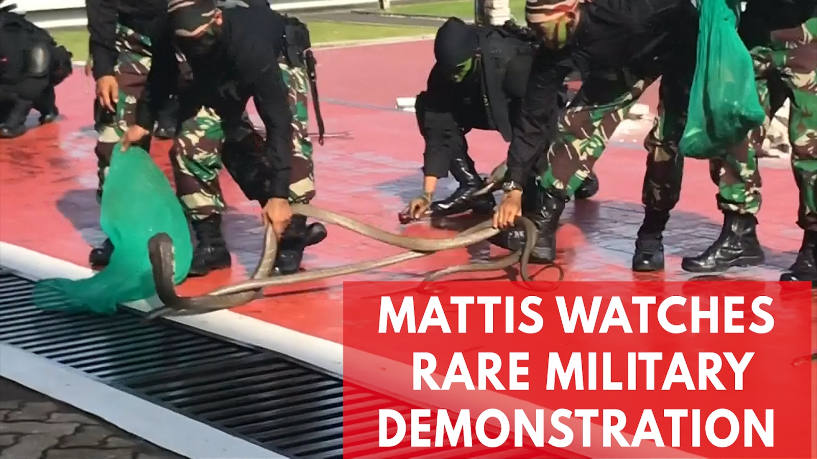 Mattis Watches Indonesian Forces Drink Snake Blood, Walk On Fire And Break Bricks