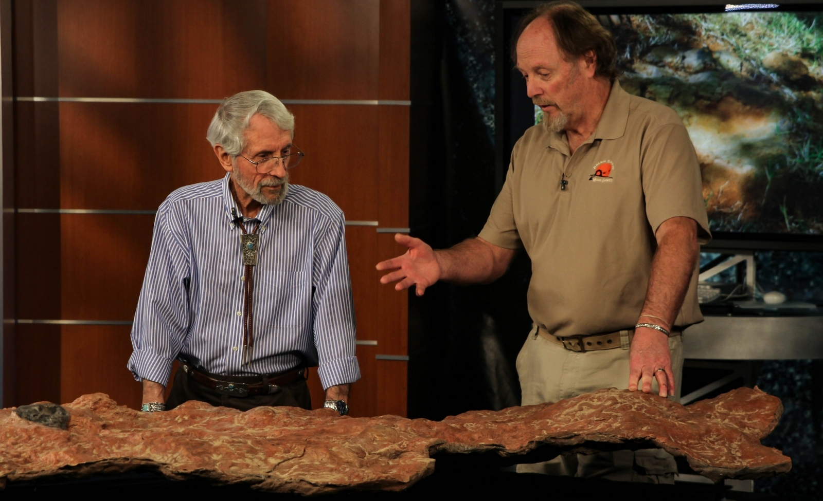 NASA Goddard Makes Discovery of Dinosaur Tracks Behind Its Building