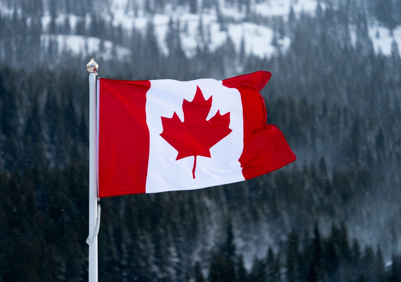Canada has made its national anthem gender-neutral
