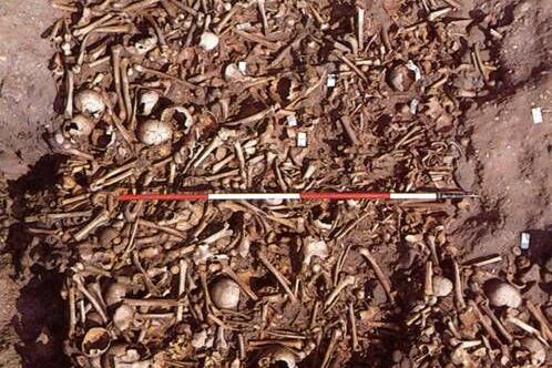 Repton Great Viking Army human bones